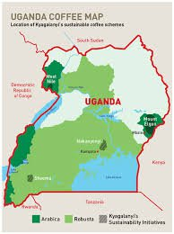 Coffee Regions Uganda